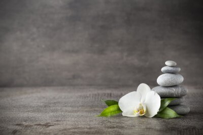 Quadro White orchid and spa stones on the grey background.