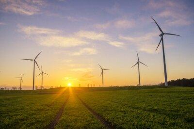 Quadro Wiatraki (Wiatrowe turbiny)