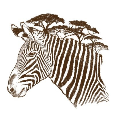 Quadro Zebra con albero